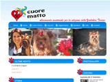 Anteprima www.ilcuorematto.it