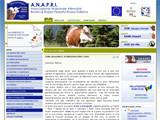 Anteprima www.anapri.it