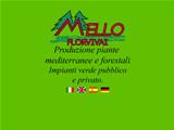 Anteprima www.melloflorvivai.it