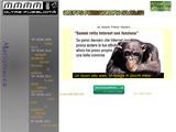 sito internet gratuito 5