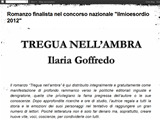 Anteprima treguanellambra.blogspot.it