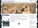 Anteprima www.lavitachepassione.it