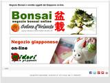 Anteprima www.coloredoriente.com