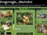 Anteprima fungomagia.blogspot.it