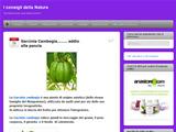 Anteprima consiglinatura.wordpress.com