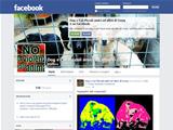 Anteprima www.facebook.com/pages/DogCat-Piccoli-amici-ed-altro/353609131361269