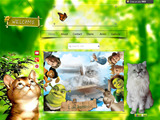Anteprima romeocat.wix.com/romeosilverpersian