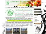 Anteprima eshop.chiocciolatecnologica-store.net