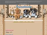 Anteprima zampettine.blogspot.it