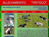 Anteprima www.allevamentotritolo.com