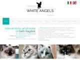 Anteprima www.whiteangels.it