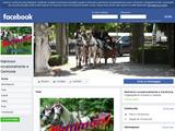 Anteprima www.facebook.com/pages/matrimoni-e-cerimonie/126007144095888?ref=mf