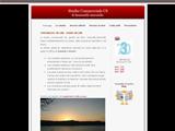 Anteprima www.studiocommercialecs.it