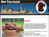 Anteprima www.deitorricini.com