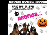 Anteprima www.brendaasnicarcommunity.fan-club.it