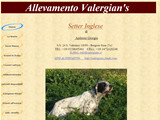 Anteprima www.valergians.it