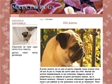 Anteprima carlinimainlo.oneminutesite.it