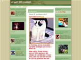 Anteprima gattiblog.typepad.com/gatti_fatti_e_misfatti