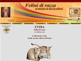 Anteprima www.felinirazza.com