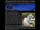Anteprima www.arabianhorseprestige.it