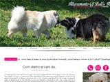 Anteprima www.angelfarm.it