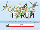 Anteprima calopsiteforum.italianoforum.com