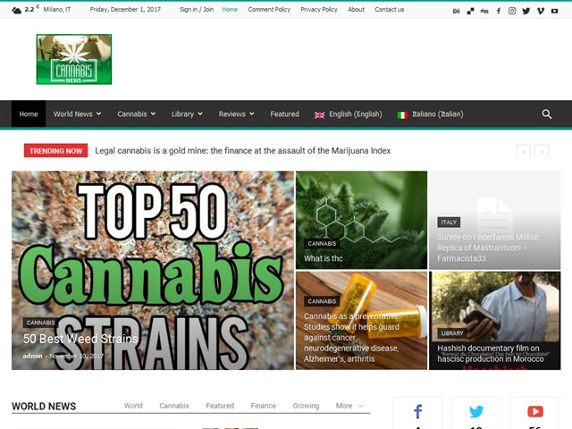 Anteprima cannabisinfo.it