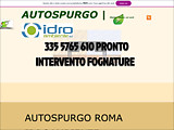 Anteprima autospurgorizzi8.wixsite.com/autospurgo-roma
